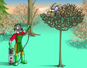 Puutarhakasvien hoitaminen