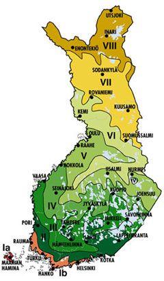 Suomen Pituus