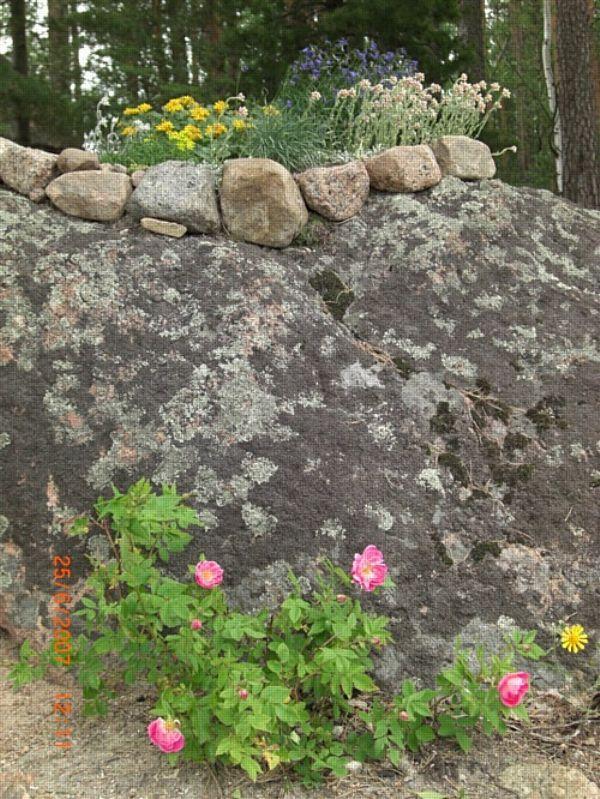 Angela kivi ruiskuttaminen